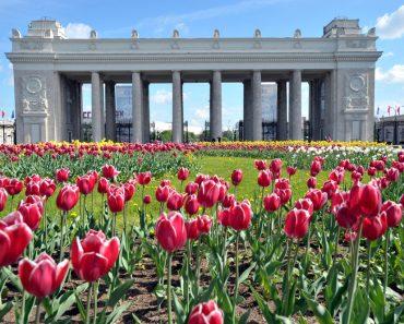 turism Moscova